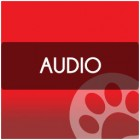 nab_icons_audio